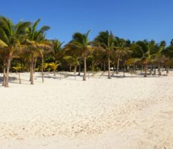 Panorámica Playa de Akumal / Akumal Beach Panoramic